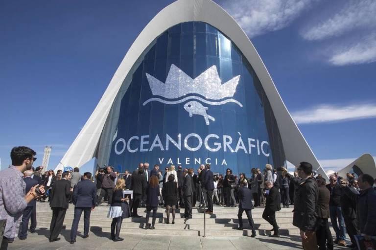 Cacsa reparar el oceanogr fic diecis is meses despu s de for Precio oceanografic valencia 2016