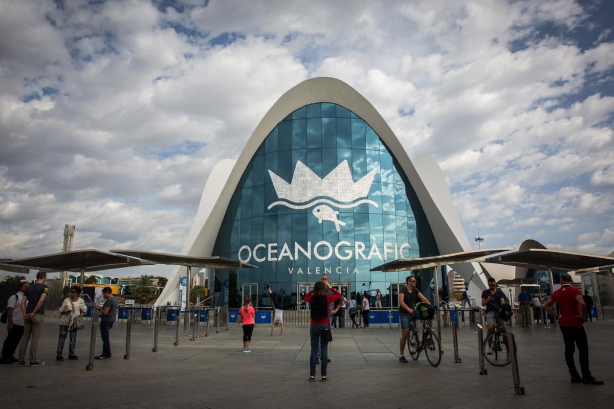 Aguas de valencia eleva sus ingresos a 279 millones con la for Precio oceanografic valencia 2016