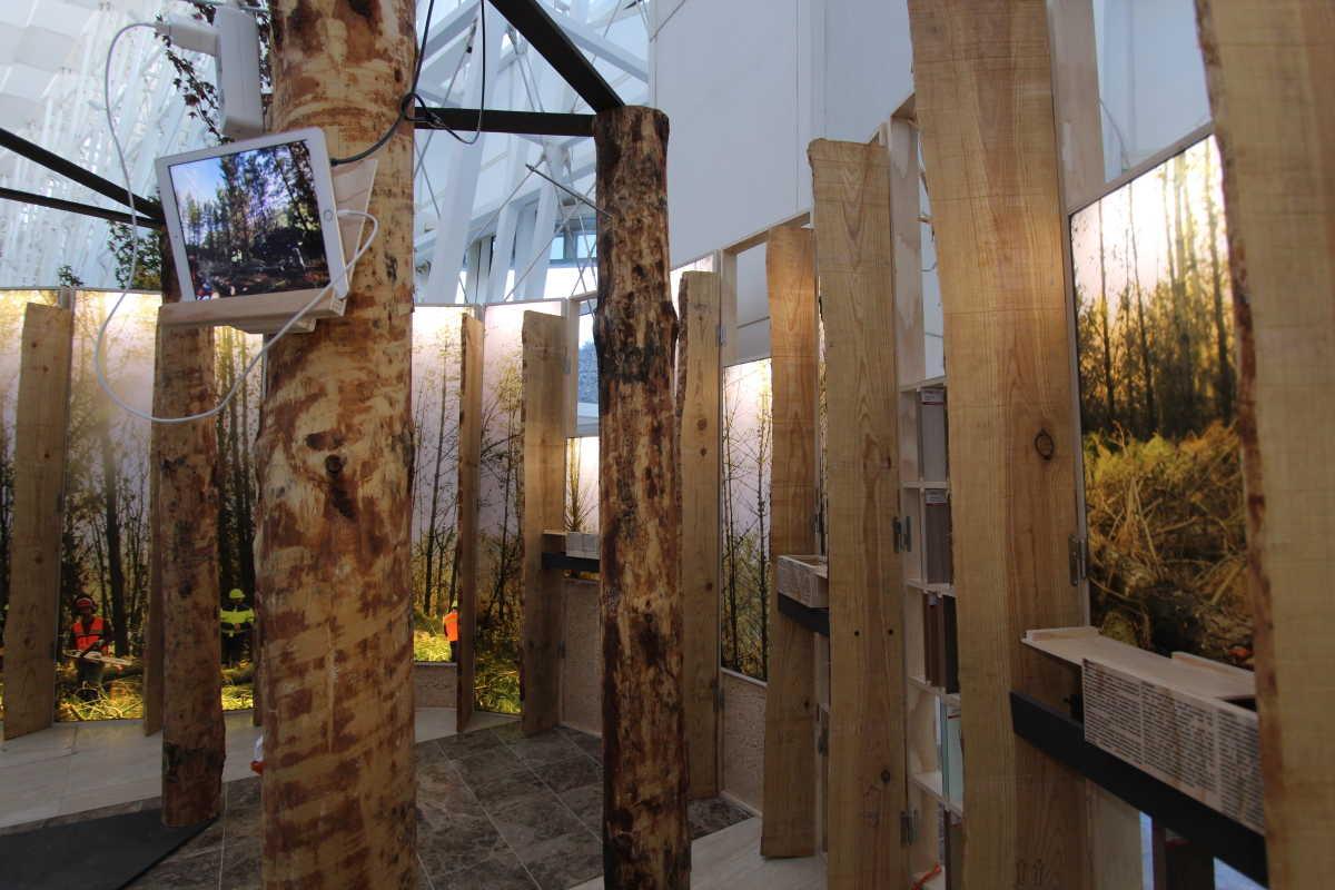 Una exposici n muestra las conexiones entre el espacio y - Carpinterias de madera en valencia ...