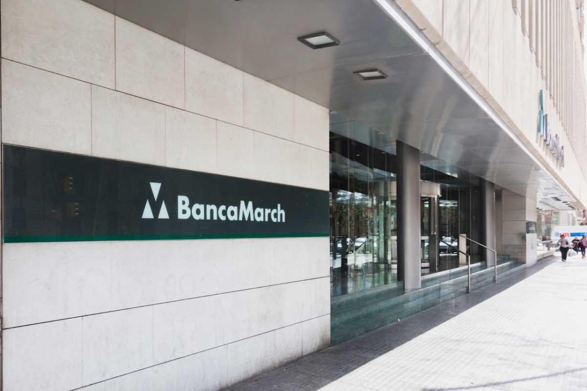 El consejo de corporaci n financiera alba gan un 5 m s for Corporacion financiera alba