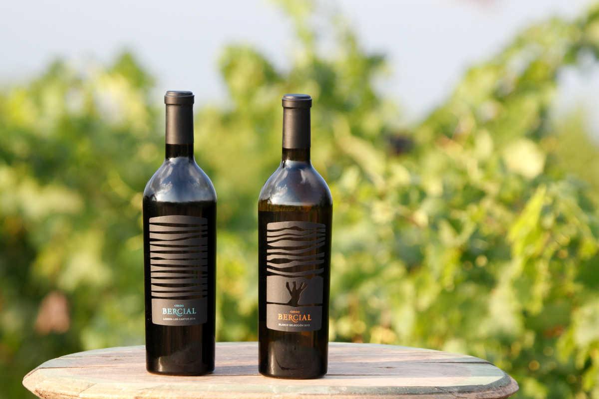 Los vinos valencianos en la gu a pe n 2018 gu a hedonista - Bodegas de vino en valencia ...