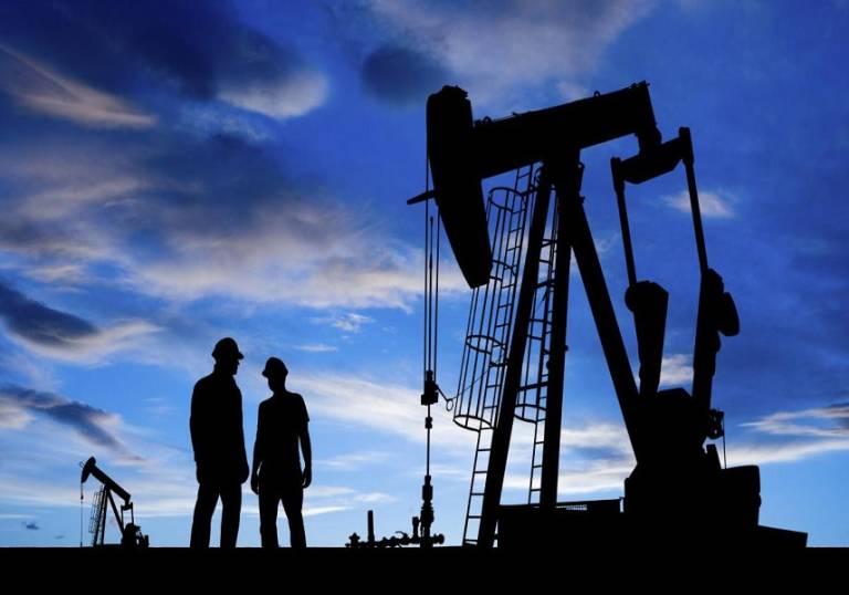 La OPEP prevé que la demanda de su petróleo caerá en 2019