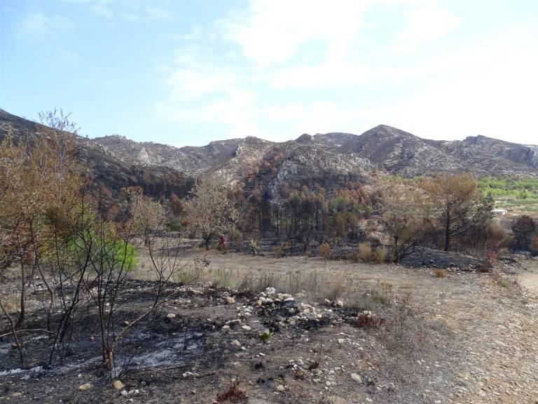 El gobierno declarar zona de emergencia los lugares afectados por el incendio de llutxent - Casa de los caramelos valencia ...