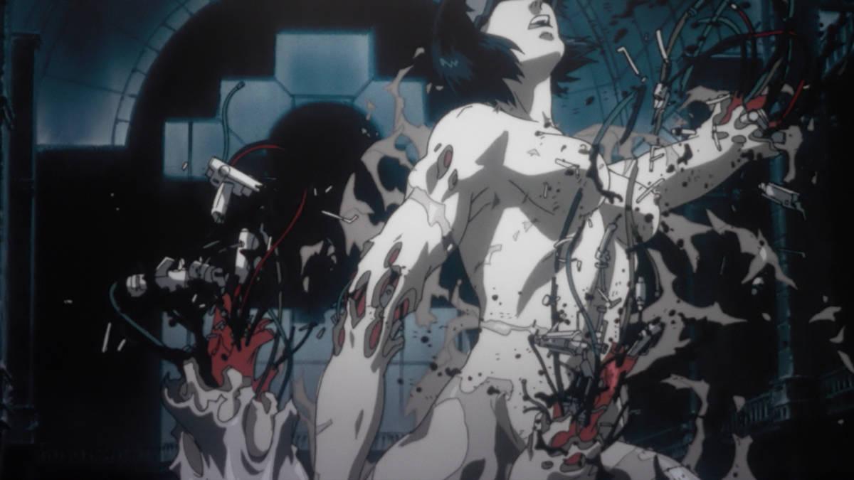 dioses del anime
